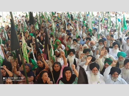 Over 95 Canada & UK based organizations express solidarity with Kisan Morcha in joint sta