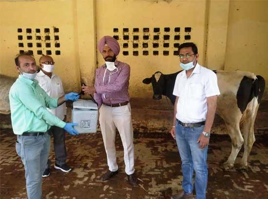 42 Vaccination teams deployed to vaccinate 1.40 Lakh livestock