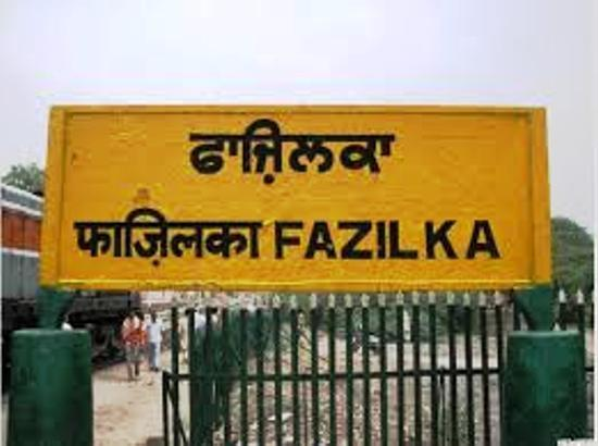 5 more Corona +ve reported in Fazilka, active cases tally reach 111