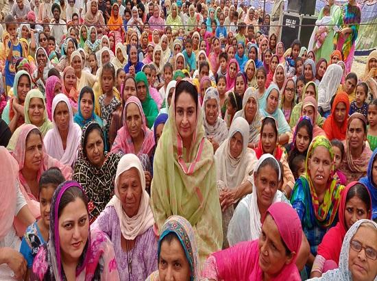 Goons have entered Bathinda at the instance of Raja Warring : Harsimrat