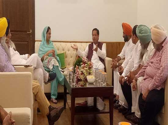 We will ensure safety and security of Sikhs - Meghalaya CM tells Sikh delegation led by Harsimrat