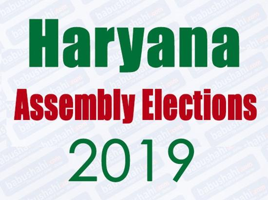 Haryana Assembly elections: 50.59 per cent polling recorded till 3.30 pm