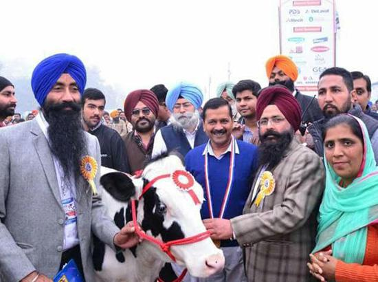 Badal-Captain should not befool people of Punjab on SYL issue- Kejriwal