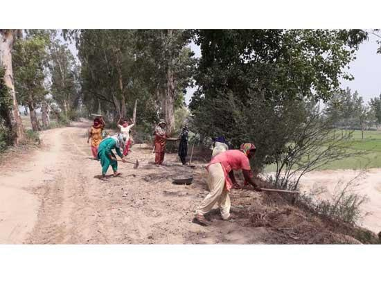 District administration ropes in MGNREGA workers for strengthening Sutlej River's embankme