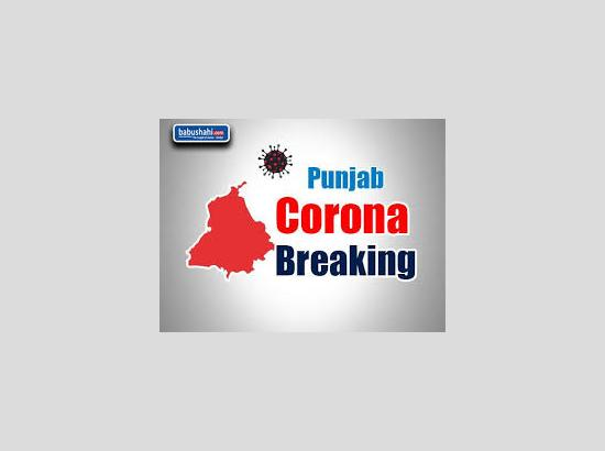 One Corona +ve case reported in Ferozepur, active +ve cases reach 73