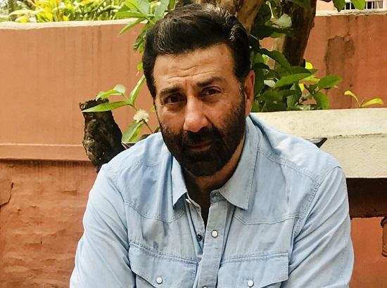 Sunny Deol leading by 72,784 votes in Gurdaspur (01:29 pm)