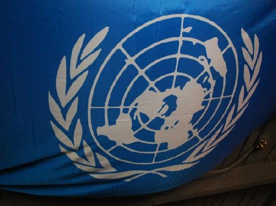 UNGA adopts resolution in fight against COVID-19