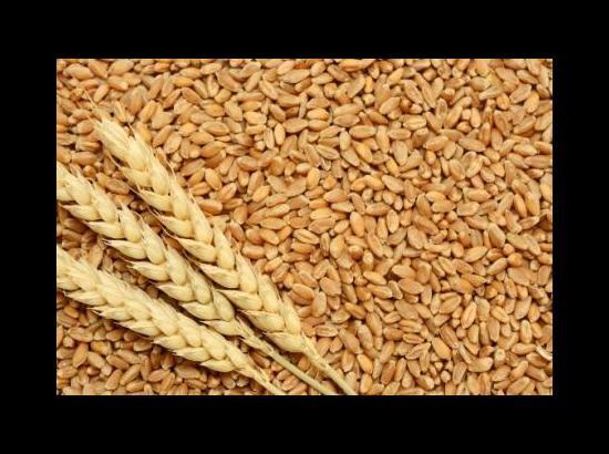 Sufficient storage space available with FCI for ongoing paddy season: MD, FCI