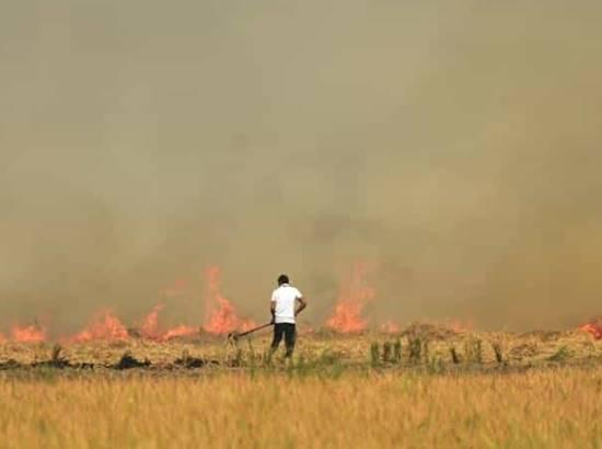 Stubble burning in times of pandemic
