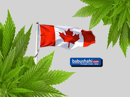 Canada legalises sale, use of cannabis