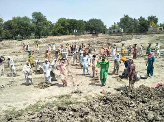 Bathinda leads in cleaning of Village ponds: DC