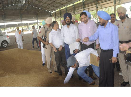 52109 MT wheat procured in Mansa, lifting and purchase smooth: DC