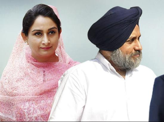 Sukhbir Badal and Harsimrat Badal to file their nominations on April 26