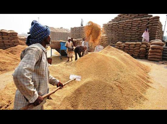 Govt agencies and private millers procure 17905450 tonnes of paddy till today