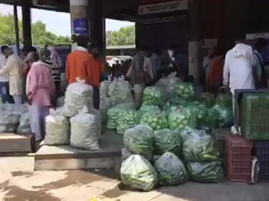 Vegetal market to start functioning from Sector 26 from Sept 15